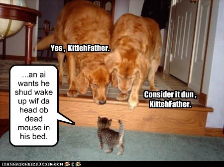 ...an ai wants he shud wake up wif da head ob dead mouse in his bed. Yes , KittehFather. Consider it dun , KittehFather.