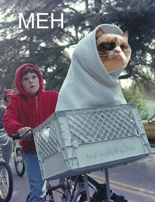 Aliens E.T movies meh Grumpy Cat tard Cats - 6742042624