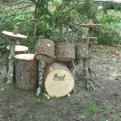 deciduous,tree drums,wooden drums,drums,drumset