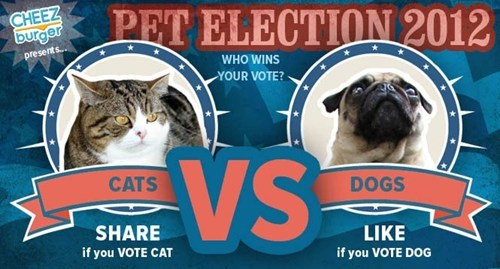 elections dogs vs facebook voting Cats politics - 6742487552
