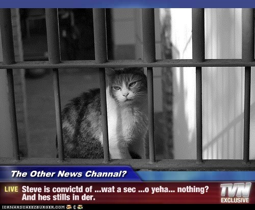 The Other News Channal? - Steve is convictd of ...wat a sec ...o yeha... nothing? And hes stills in der.