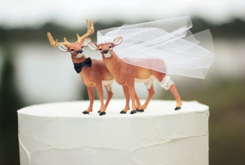 ideas creative wedding animals - 6743813