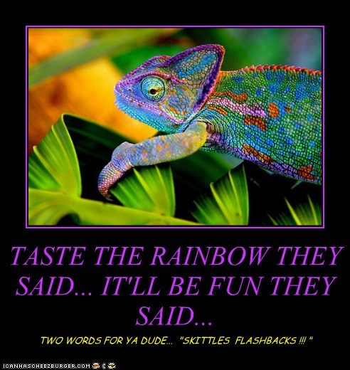 """TASTE THE RAINBOW THEY SAID... IT'LL BE FUN THEY SAID... TWO WORDS FOR YA DUDE... """"SKITTLES FLASHBACKS !!! """""""