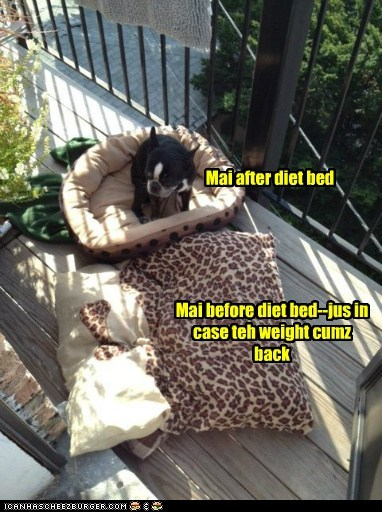Mai after diet bed Mai before diet bed--jus in case teh weight cumz back