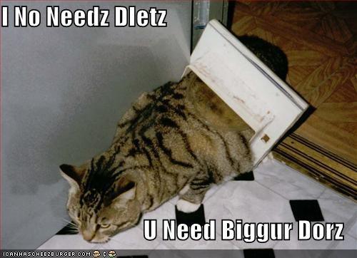 Cheezburger Image 674467584
