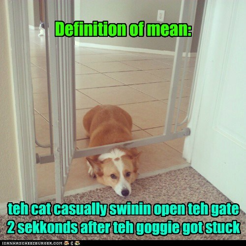 Definition of mean: teh cat casually swinin open teh gate 2 sekkonds after teh goggie got stuck