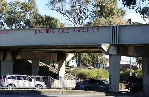 dolphins,IRL,graffiti