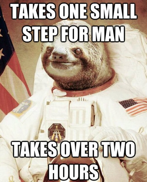 one small step,astronauts,sloths,slow,spaceman,space