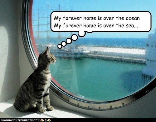 Cheezburger Image 6745960960