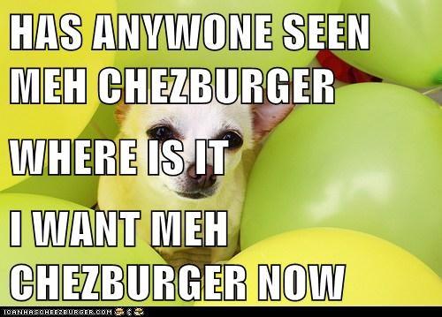 Cheezburger Image 6746021888