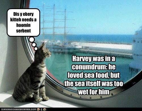 Cheezburger Image 6746214144