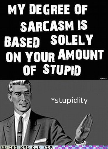 grammar nazi irony sarcasm stupidity - 6746661888