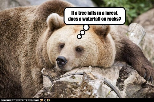 If a tree falls in a forest, does a waterfall on rocks?