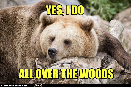 question next idiom bear everywhere bored in the woods