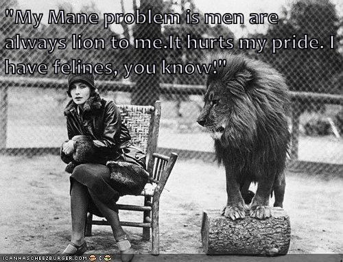 """My Mane problem is men are always lion to me.It hurts my pride. I have felines, you know!"""