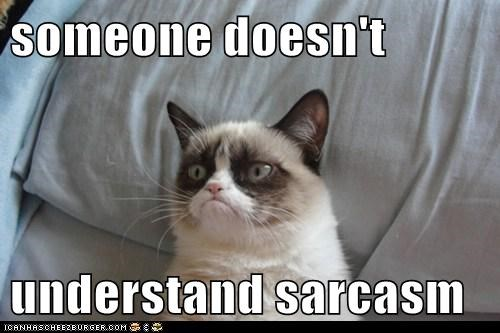 someone doesn't understand sarcasm - Lolcats - lol | cat memes | funny cats  | funny cat pictures with words on them | funny pictures | lol cat memes |  lol cats