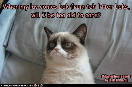 When my luv comes bak frum teh litter boks, will I be too old to care? (Adapted from a quote by Louis Grizzard)