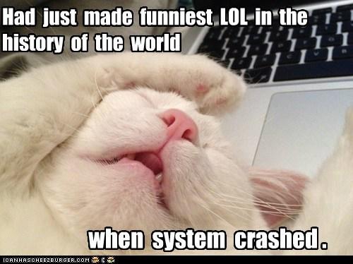 facepalm captions meta lol computer crash Cats - 6748006912