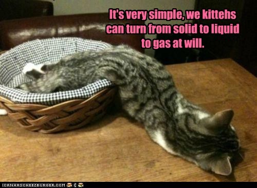 It's very simple, we kittehs can turn from solid to liquid to gas at will.