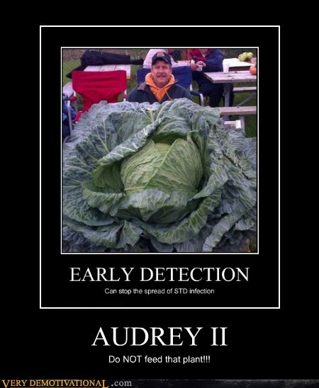 AUDREY II Do NOT feed that plant!!!