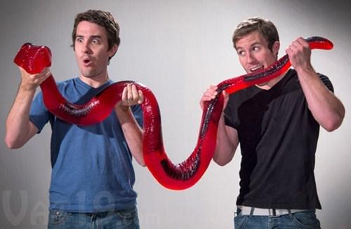 candy snack gummy python snake - 6749049856
