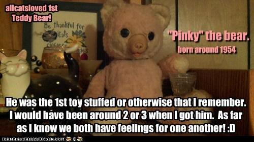 Allcats 1st Teddy Bear