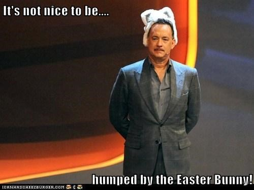 tom hanks,Easter Bunny,uncomfortable,hat,humping