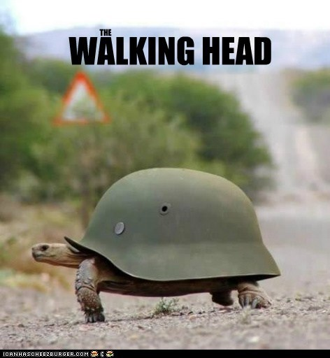 WALKING HEAD THE