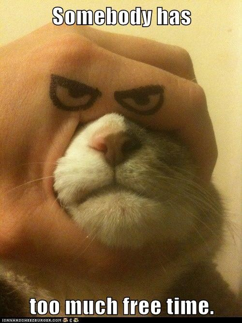 free time face captions eyes Cats hand - 6749913600