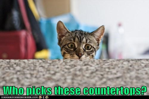 counter countertops captions hideous granite kitchen ugly Cats