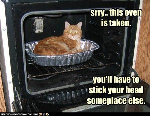 taken head captions suicide kill Cats oven - 6750844672