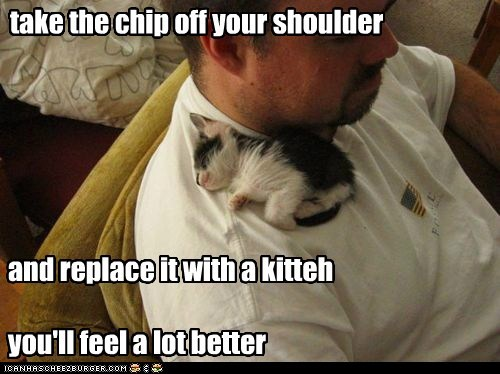 optimism shoulder captions chip Cats