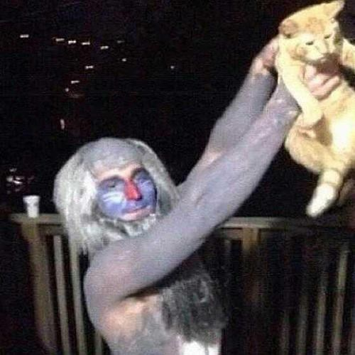 the lion king costume Cats