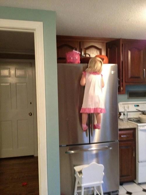 climbing fridge halloween candy