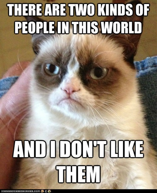 hate,dont-like,jokes,captions,tards,grumpy,there are two kinds of people,Grumpy Cat,Cats