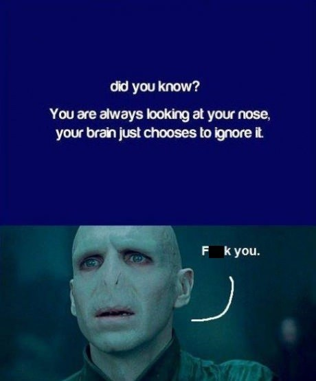 did you know,Harry Potter,voldemort,nose,if i had one