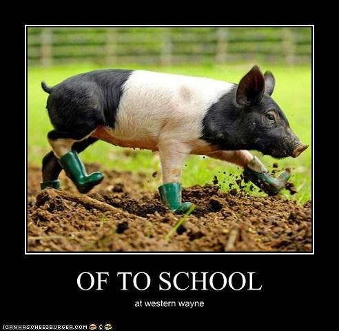 OF TO SCHOOL at western wayne