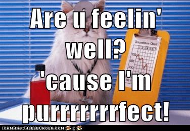 Are u feelin' well?  'cause I'm purrrrrrrfect!