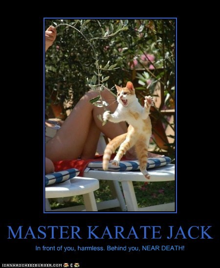 MASTER KARATE JACK In front of you, harmless. Behind you, NEAR DEATH!