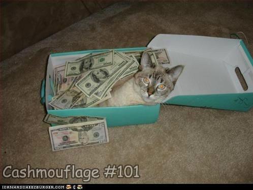 Cheezburger Image 6752605184