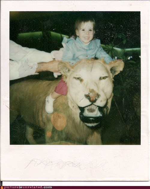 queen,mall,riding,lion