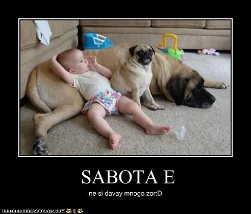 SABOTA E ne si davay mnogo zor:D