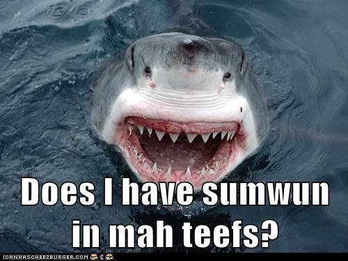 eating people teeth shark someone - 6753361664