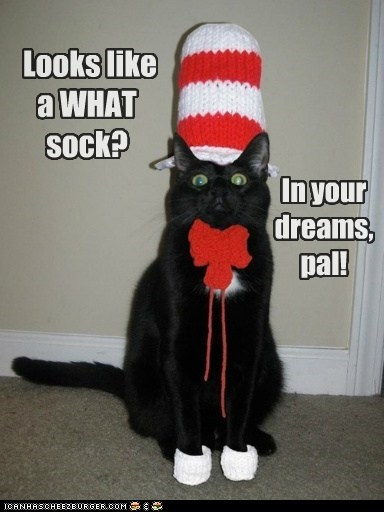 Looks like a WHAT sock? In your dreams, pal!