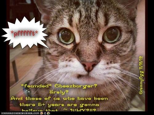 Cheezburger Image 6753974784