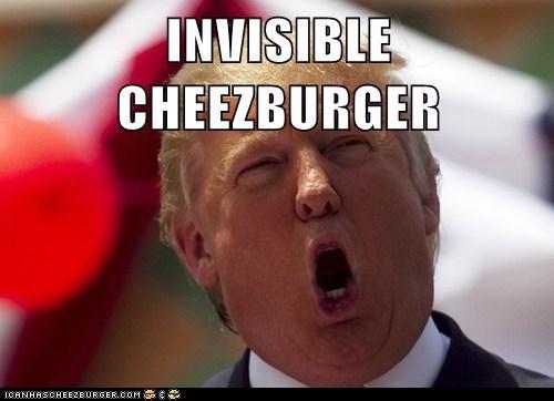 Cheezburger Image 6754072064