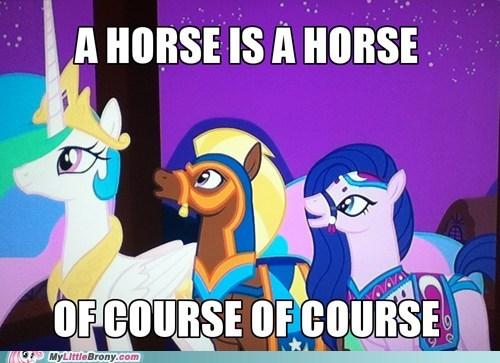 pun,what,horses