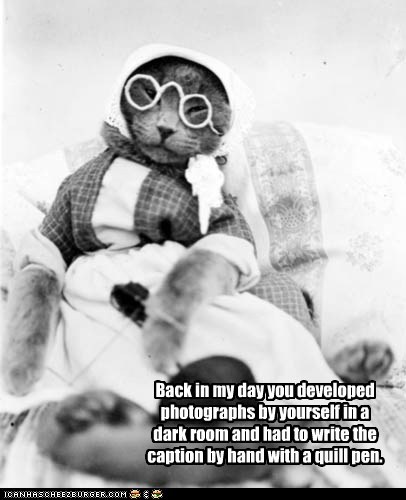 costume cat history lols glasses
