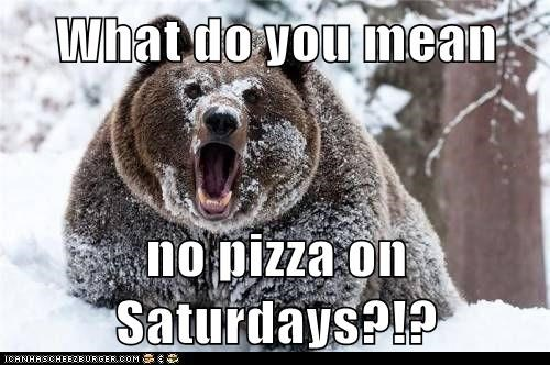 saturdays,pizza,snow,what do you mean,bear,angry