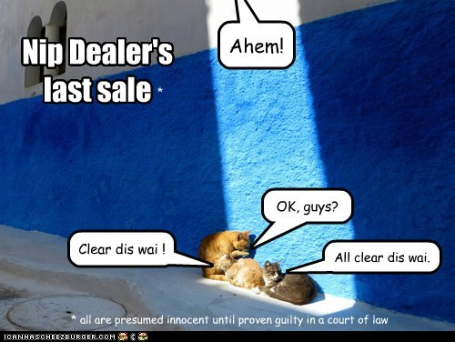 All clear dis wai. Clear dis wai ! Ahem! OK, guys? Nip Dealer's last sale * all are presumed innocent until proven guilty in a court of law *